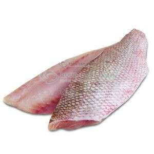 Red snapper filet